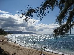 hawaii200803.jpg