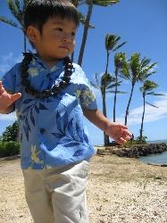 hawaii200804.jpg