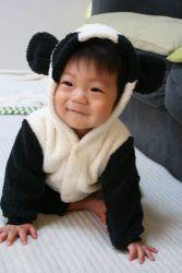 panda_takuto2.jpg
