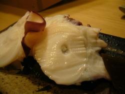 sushi_tako.jpg